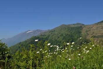 Alpe di Naccio e Gridoni - Free image #298565