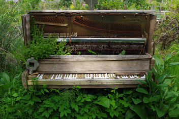Garden Piano - image #298995 gratis