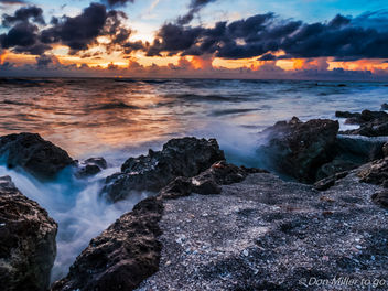 My Florida - image gratuit #300915