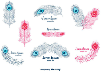 Peacock Feather Vector - Free vector #302175