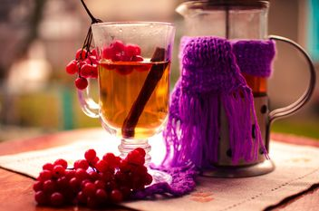 warm tea outdoor with vibrunum - image gratuit #302915