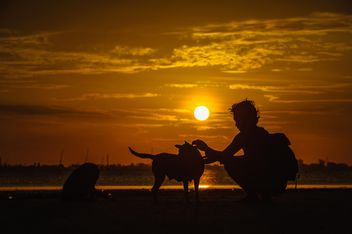 silhouette of man and dog at sunset - image #303975 gratis