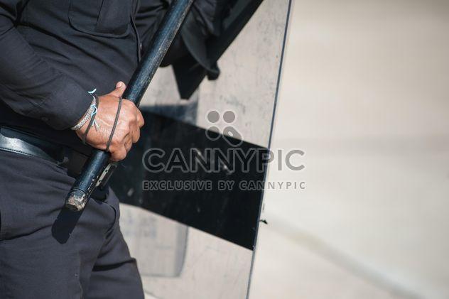 El desfile de policías tierra - image #304665 gratis
