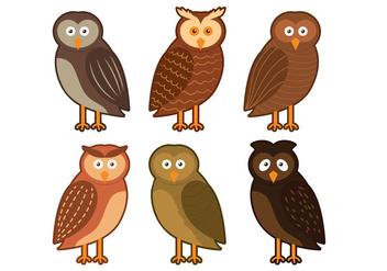 Barn Owl Character Vector - бесплатный vector #305445