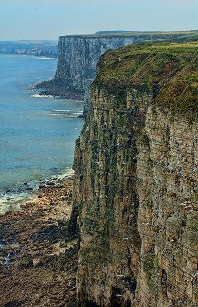 Bempton Cliffs, Bridlington, East Yorkshire - бесплатный image #306255