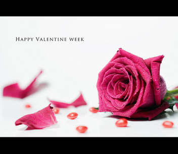 5/52 Happy Valentine Week :) - Free image #308645