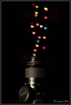 Canon Love - Free image #308875