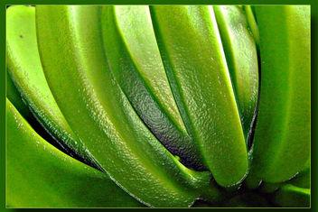 Green bananas - Free image #309225