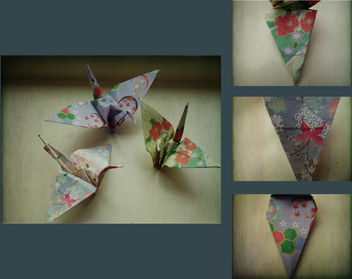 crane love - Kostenloses image #310145
