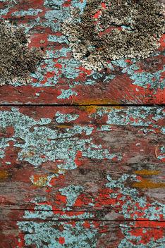 Peeling Paint & Barnacles - Free image #311575