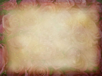 bed of roses- free texture - Free image #312045