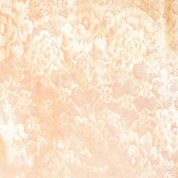 Chantilly lace... - Free image #312405