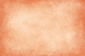 Worn Orange - Free image #313795