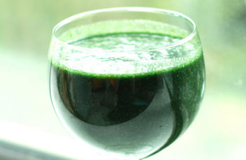 ~ Green Goddess Smoothie ~ - Free image #317305