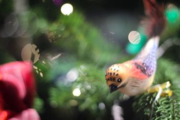 Christmas bird on a tree - image #317355 gratis