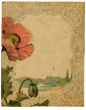 Poppy Dream - image #321725 gratis
