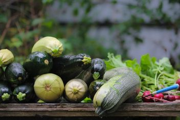 vegetable marrows - Free image #327895