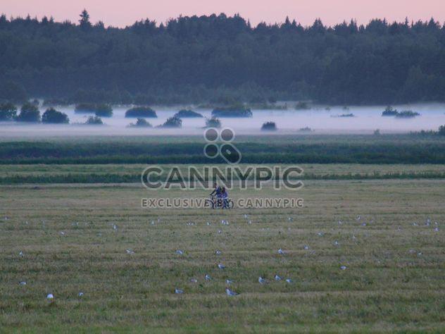 Niebla en la región de Leningrado tempestuoso río -  image #329945 gratis
