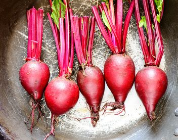 Organic new raw beets  - Kostenloses image #330715