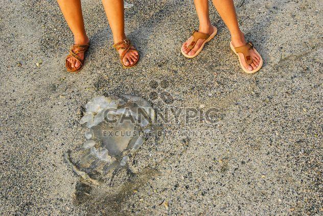 Children's legs on sand - Free image #332915