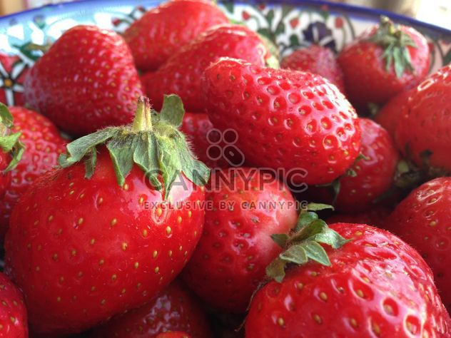 fraises rouges - image gratuit #334295
