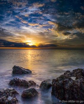 Fluid Florida - Free image #335895