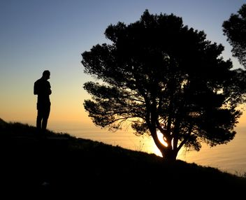 Man near tree at sunset - image #338535 gratis