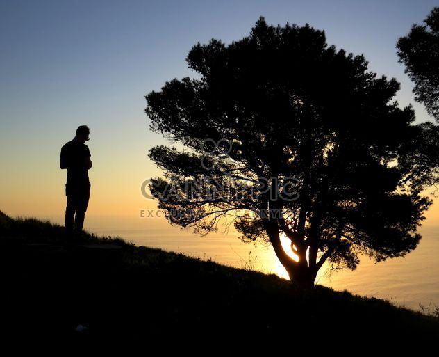 Mann in der Nähe von Baum bei Sonnenuntergang - Kostenloses image #338535