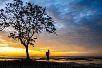 Man under tree at sunset - image #338595 gratis