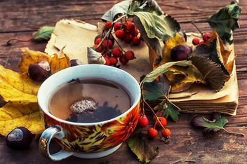 Cup of tea, dry leaves and old book - бесплатный image #339235