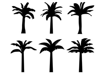 Banana Tree Vector - vector gratuit #339355