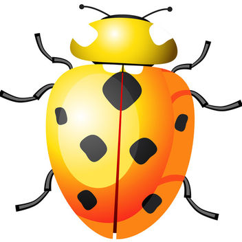 Yellow Ladybug - Kostenloses vector #340215