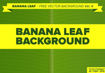 Banana Leaf Free Vector Background Vol. 3 - бесплатный vector #342205