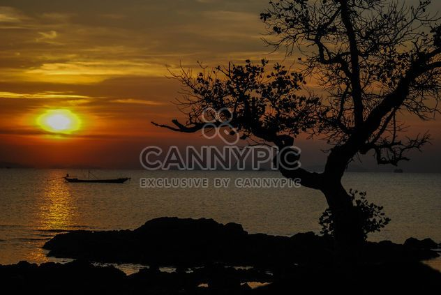 Dark orange sunset - Free image #344115