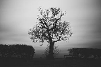 Darkness Falls - image gratuit(e) #344495