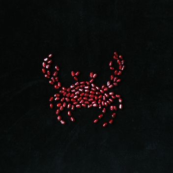 Crab made of pomegranate seeds on black background - image #345045 gratis