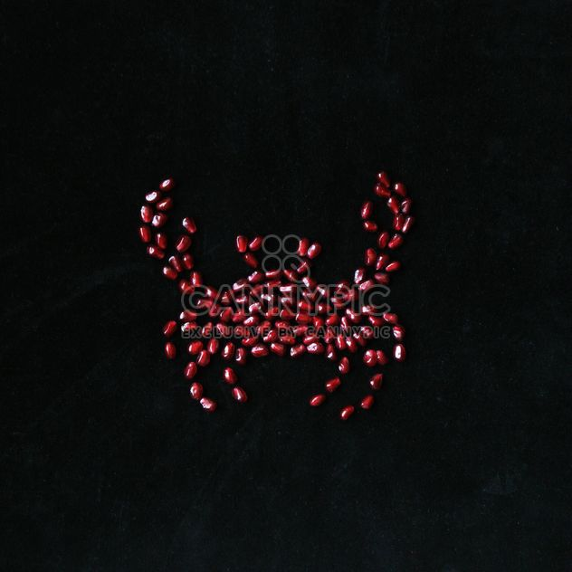 Crab made of pomegranate seeds on black background - image gratuit #345045