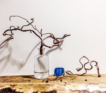 Still life with branch in bottle - image #345065 gratis