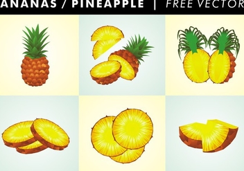 Ananas / Pineapple Free Vector - бесплатный vector #345315