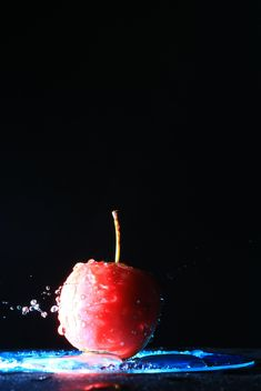 Red apple in water on black background - бесплатный image #346615