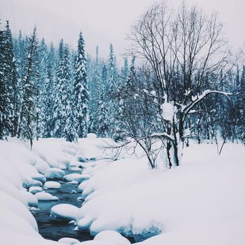 Winter landscape with creek in forest - image #347005 gratis