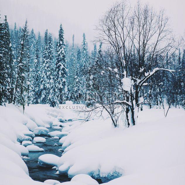 Paisagem do inverno com riacho na floresta - Free image #347005