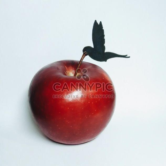 Composition avec apple Colibri et rouge sur fond blanc - Free image #348655