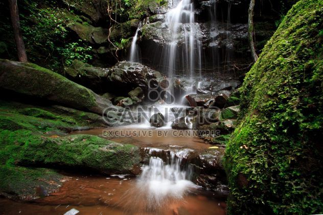 Landscape with beautiful waterfall in forest - Free image #348945