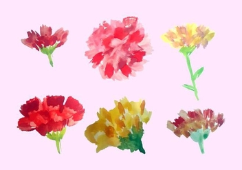 Free Watercolor Carnation Vector Pack - Free vector #352135