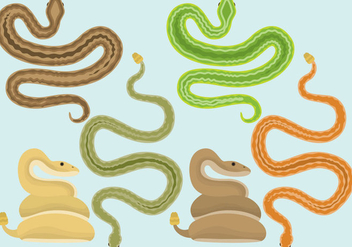 Snakes And Rattlesnake Vectors - Free vector #352395