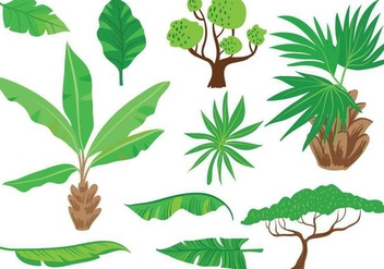 Free Exotic Vegetation Vectors - vector gratuit #355405