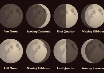 Moon Phases Vector - Kostenloses vector #355725