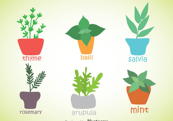Herbs And Spices Plant Vector - Kostenloses vector #357805