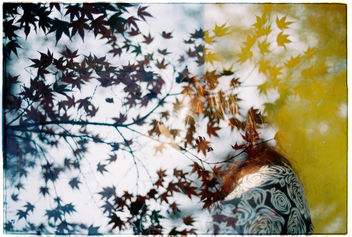 Film #swap with Amy Chu - Free image #360375